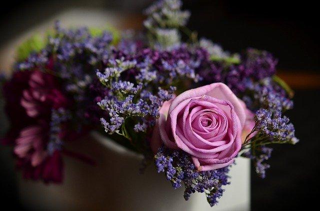 Zdjęcie do tekstu - Kwiaty balkonowe